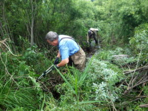 Removing willows along east fork channel. (Seaquest Productions)