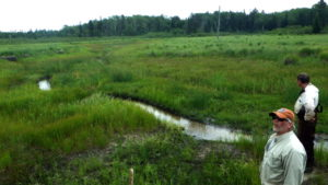 Beaupre channel in 3rd pond 1 year after restoration. (Seaquest Productions)